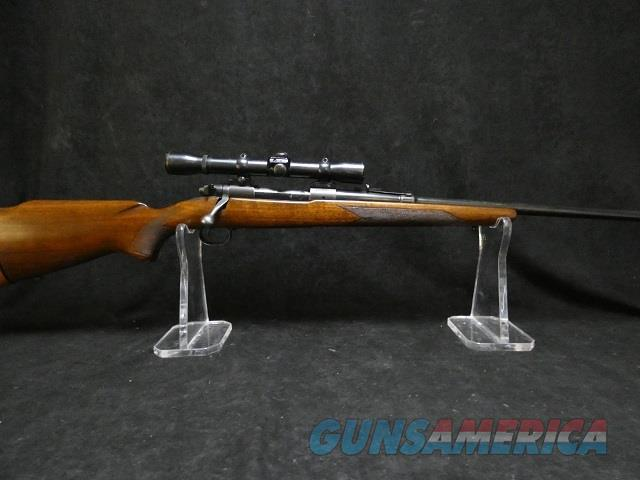 Winchester model 70 Pre-64  Guns > Rifles > Winchester Rifles - Modern Bolt/Auto/Single > Model 70 > Pre-64