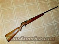 MOSSBERG 183 .410 BOLT SHOTGUN  Guns > Shotguns > Mossberg Shotguns > Pump > Sporting