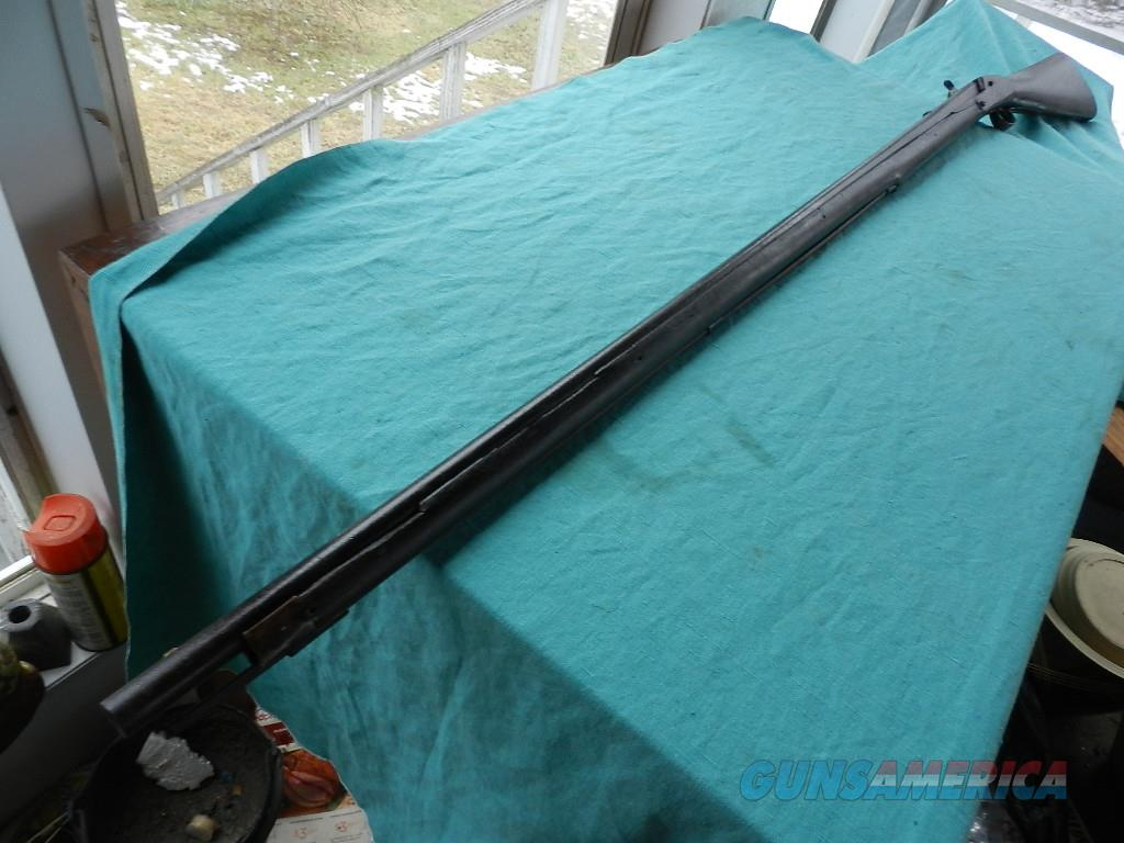 "EARLY LONG PERCUSSION MUSKET  63"" o.a.  Guns > Rifles > Antique (Pre-1899) Rifles - Perc. Misc."