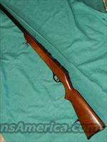 MARLIN 81/RANGER 103-13 BOLT 22  Guns > Rifles > Marlin Rifles > Modern > Bolt/Pump
