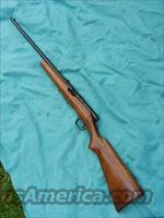 SAVAGE MODEL 87 SEMI-AUTO .22LR  Guns > Rifles > Savage Rifles > Other