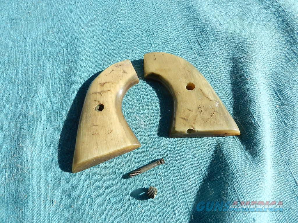 COLT SAA COW HORN GRIPS  Non-Guns > Gunstocks, Grips & Wood