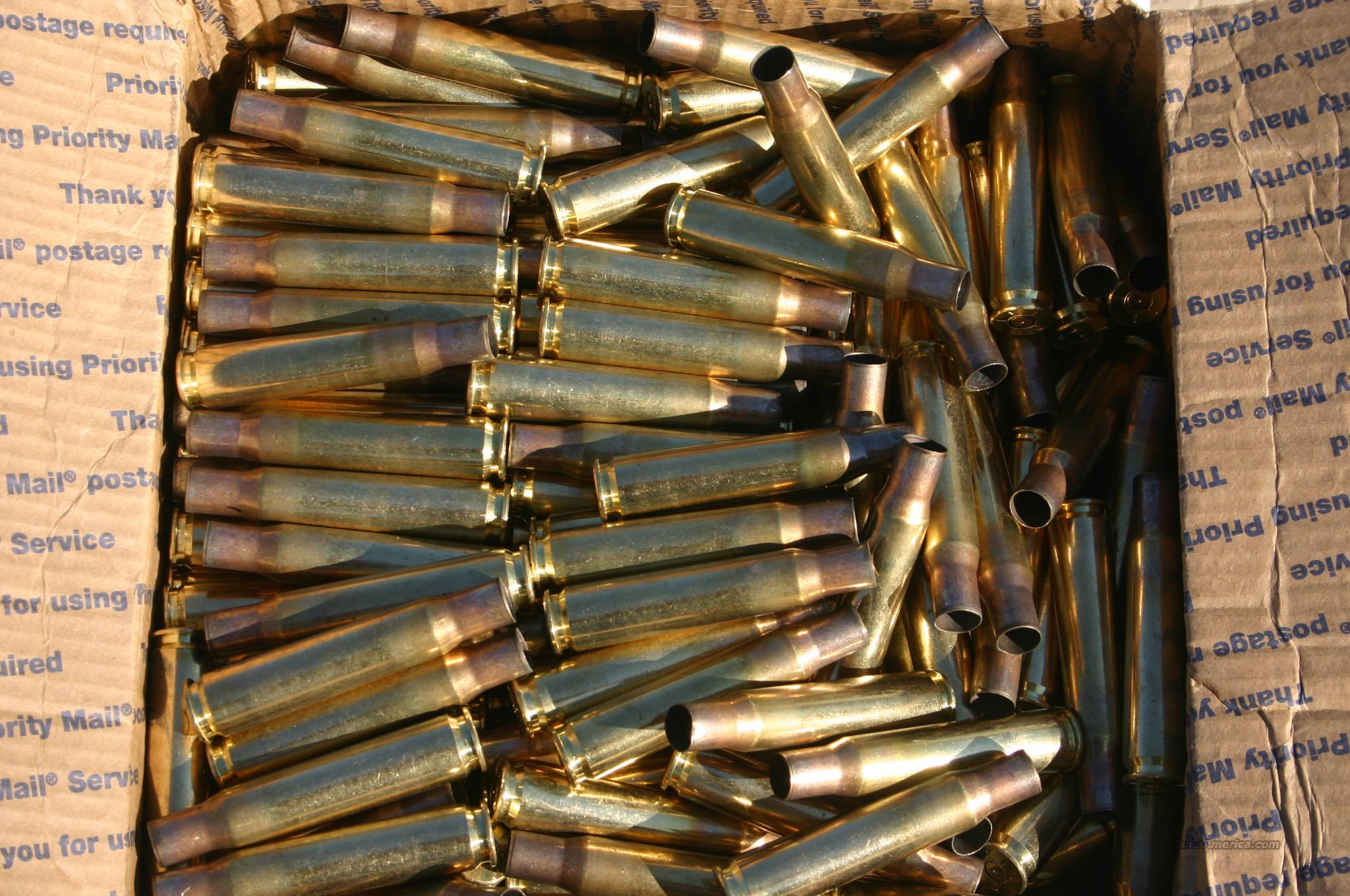 50 BMG Brass fired 1x out of Bolt Action  Non-Guns > Reloading > Components > Brass