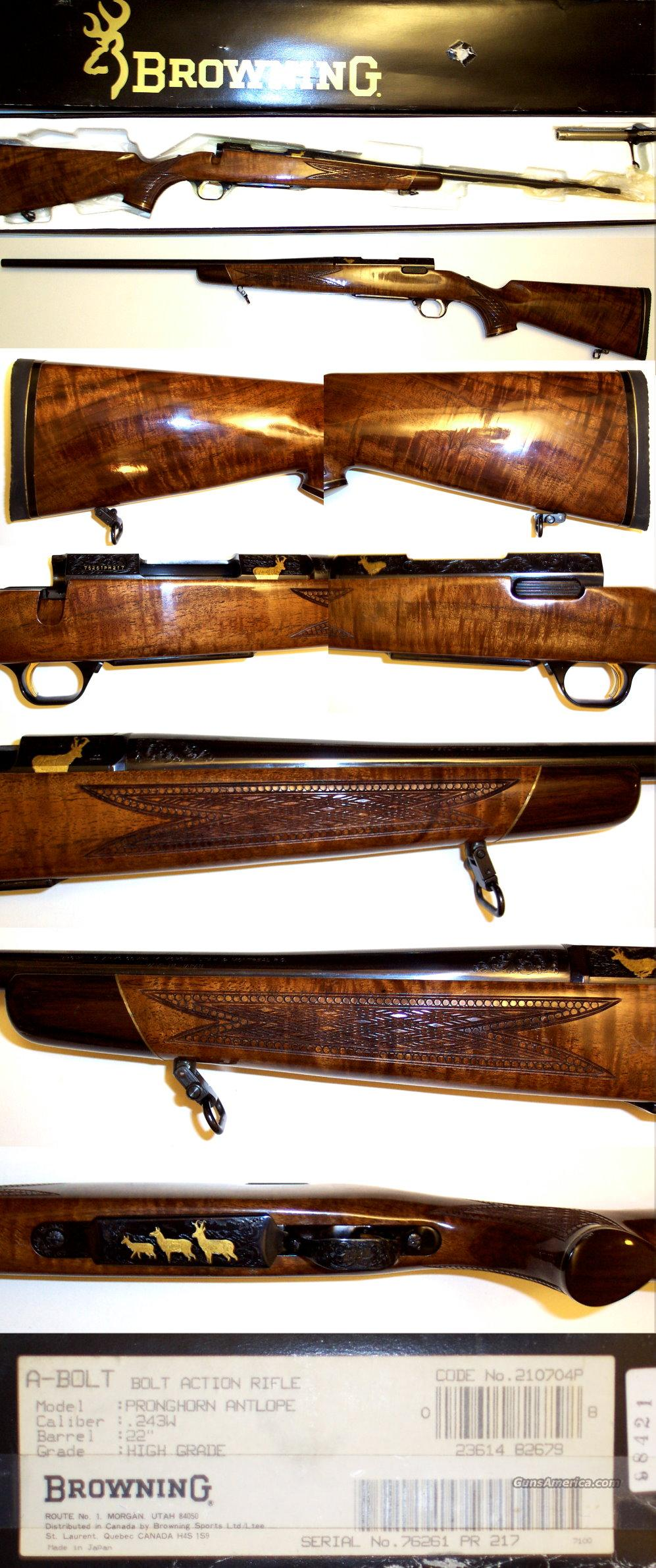 Browning A-bolt Pronghorn High Grade 243 Win ANIB  Guns > Rifles > Browning Rifles > Bolt Action > Hunting > Blue