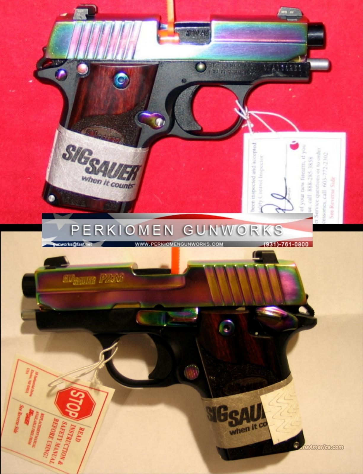 P238 RAINBOW, .380, Nite Sights, New in Box  Guns > Pistols > Sig - Sauer/Sigarms Pistols > P238