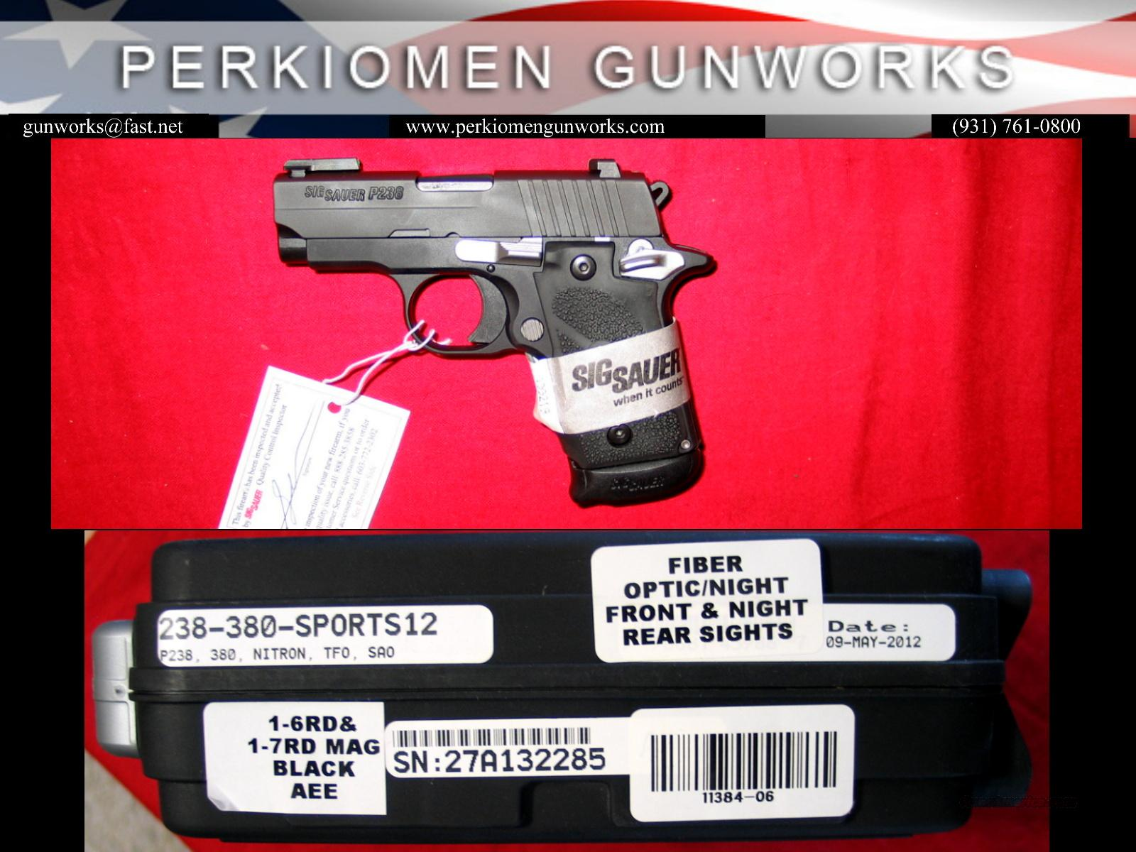 P238-380-SPORTS12 Nightmare - NIB w/Hogue grips and 2 mags  Guns > Pistols > Sig - Sauer/Sigarms Pistols > P238