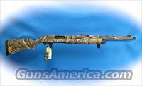 Remington Model 887 Turkey 12 Ga Pump Shotgun **New**  Guns > Shotguns > Remington Shotguns  > Pump > Hunting