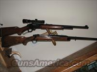 RUGER EXPRESS RIFLE in .416 Rigby  Guns > Rifles > Ruger Rifles > Model 77