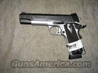 SIG SAUER 1911 Traditional .45ACP Reverse Two Tone!!!NEW!!! LAYAWAY!!!!  Guns > Pistols > Sig - Sauer/Sigarms Pistols > 1911
