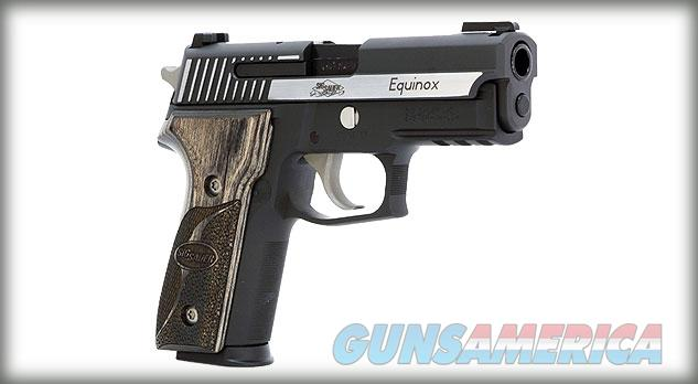 SIG P229 EQUINOX  in .40S&W!!!!!!!NEW!!!LAYAWAY!!!  Guns > Pistols > Sig - Sauer/Sigarms Pistols > P229
