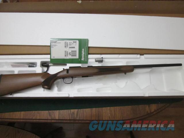 Remington 504 17 Mach 2  Guns > Rifles > Remington Rifles - Modern > .22 Rimfire Models