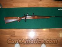 Ruger 77 22-250  Guns > Rifles > Ruger Rifles > Model 77