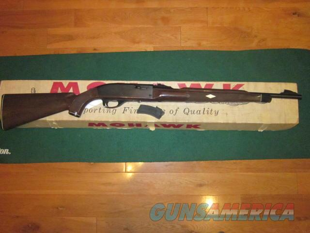 Remington Nylon 10C  Guns > Rifles > Remington Rifles - Modern > .22 Rimfire Models