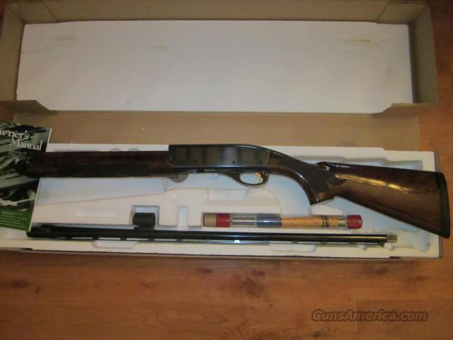 Remington 1100 Sporting 28  Guns > Shotguns > Remington Shotguns  > Autoloaders > Trap/Skeet