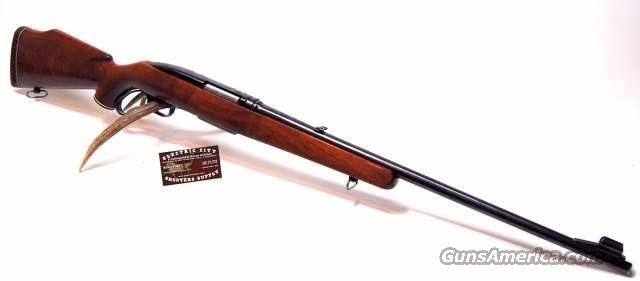Winchester Model 88 .284 Win.  (pre-64)  Guns > Rifles > Winchester Rifles - Modern Lever > Other Lever > Pre-64