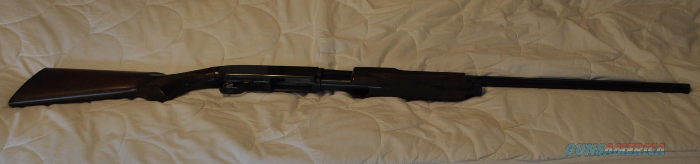 28 Gauge BPS Shotgun  Guns > Shotguns > Browning Shotguns > Pump Action > Hunting