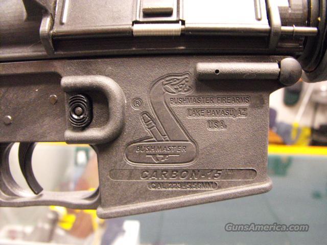 Bushmaster   Guns > Rifles > Bushmaster Rifles > Complete Rifles