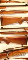 Winchester Pre-64 Model 70 Transition 1947  Guns > Rifles > Winchester Rifles - Modern Bolt/Auto/Single > Model 70 > Pre-64
