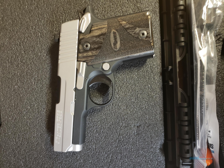 Sig Sauer P938 2Tone Night Sights 9mm  Guns > Pistols > Sig - Sauer/Sigarms Pistols > P938