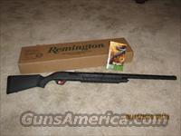 Remington 887 NitroMag Ducks Unlimited  Guns > Shotguns > Remington Shotguns  > Pump > Hunting