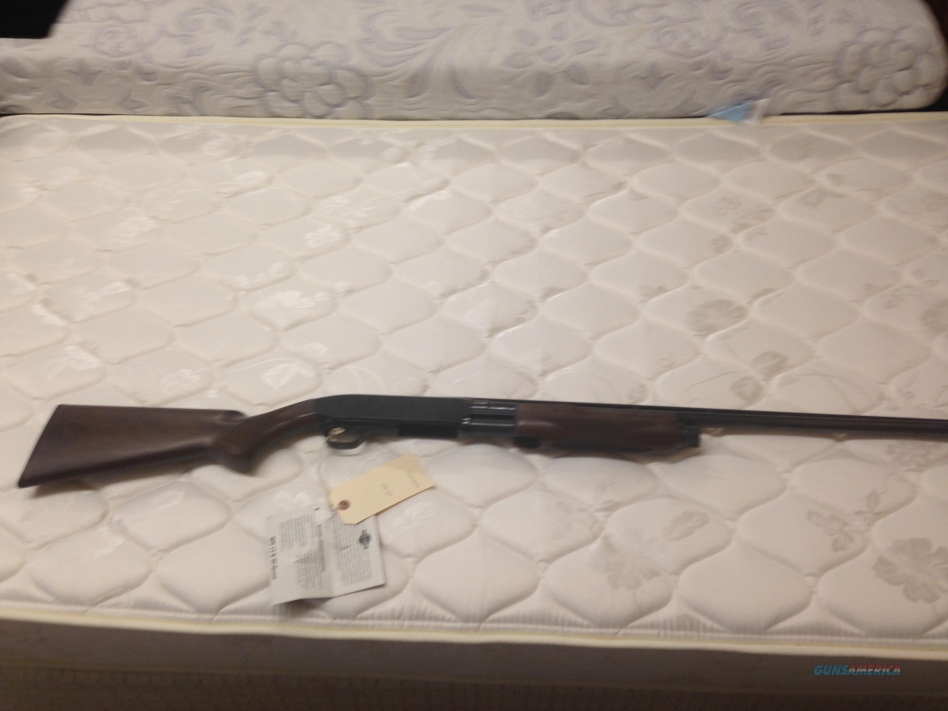 Browning BPS  20 ga.  Guns > Shotguns > Browning Shotguns > Pump Action > Hunting