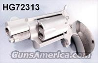 Charter .22 Mag Dixie Derringer   Guns > Pistols > North American Arms Pistols