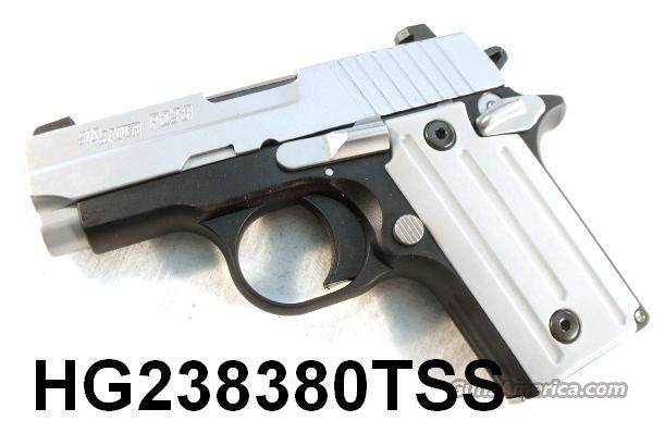 Sig .380 P-238 Two Tone SS NIB Siglite  Guns > Pistols > Sig - Sauer/Sigarms Pistols > Other