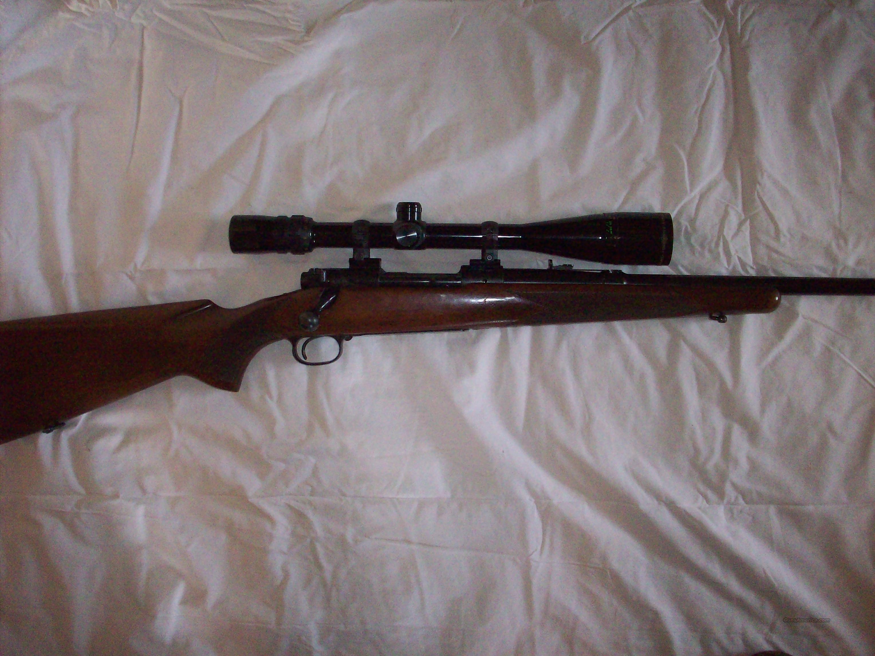 Winchester Model 70 Pre-64  Guns > Rifles > Winchester Rifles - Modern Bolt/Auto/Single > Model 70 > Pre-64