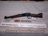 HENRY MARES LEG 22CAL  Henry Rifle Company