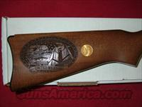 Ruger 10-22 911 Special Edition  Guns > Rifles > Ruger Rifles > 10-22
