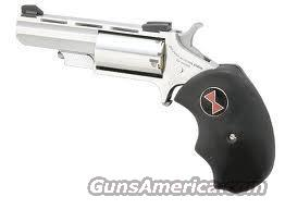 NAA BLACK WIDOW 22M/LR 2IN *FREE SHIPPING*  Guns > Pistols > North American Arms Pistols