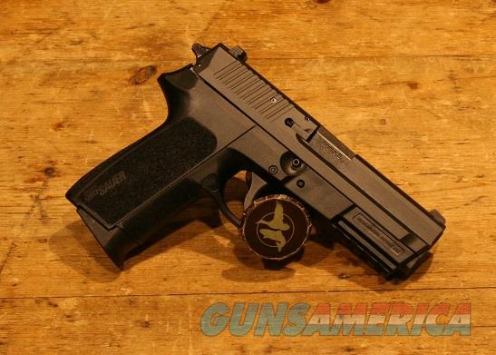 Sig Sauer 2022 9mm Contrast Sight E2022-9-B for sale