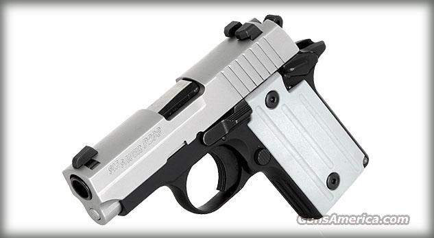 Sig Sauer P238 Two Tone, 380acp, Night Sights  Guns > Pistols > Sig - Sauer/Sigarms Pistols > P238