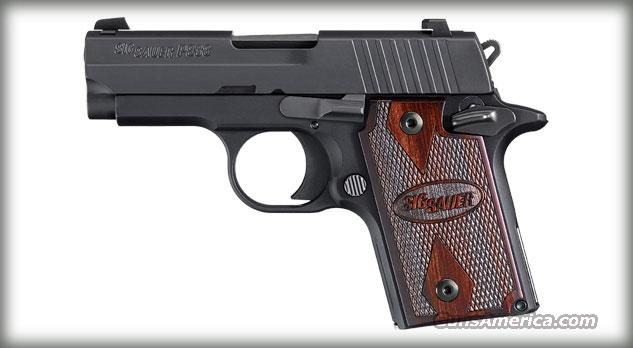 Sig Sauer P938, 9mm, Rosewood Grips  Guns > Pistols > Sig - Sauer/Sigarms Pistols > Other