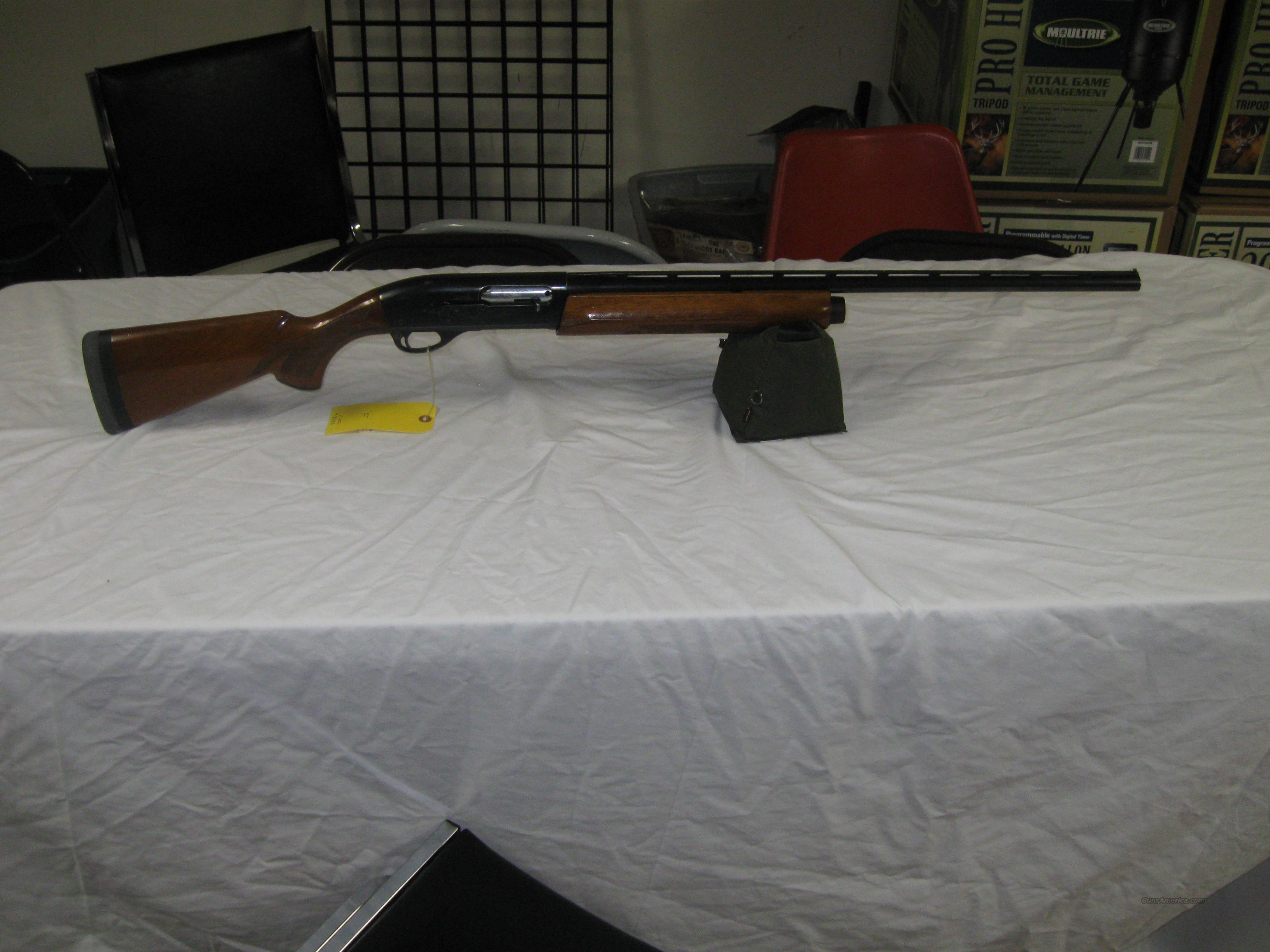 Remington 1100 20 Ga.  Guns > Shotguns > Remington Shotguns  > Autoloaders > Trap/Skeet