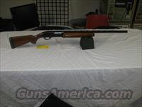Remington 1100 20 Ga.  Remington Shotguns  > Autoloaders > Trap/Skeet