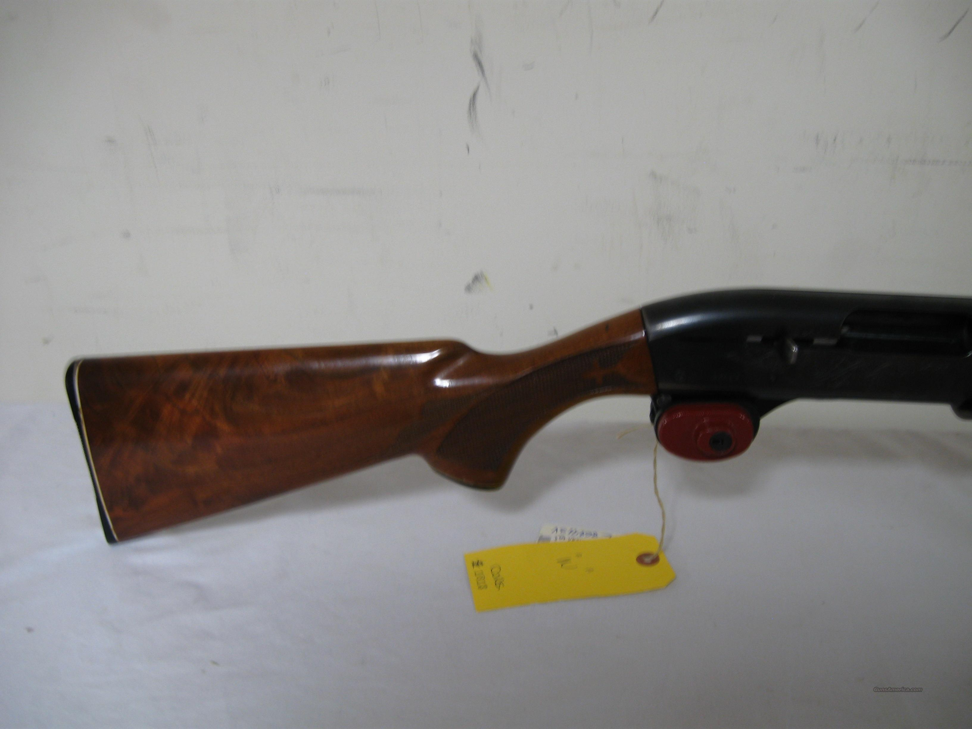 Remington 1100 Skeet-B Shotgun  Guns > Shotguns > Remington Shotguns  > Autoloaders > Trap/Skeet