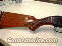 Ted Williams 12 Ga.  Guns > Shotguns > Remington Shotguns  > Autoloaders > Hunting