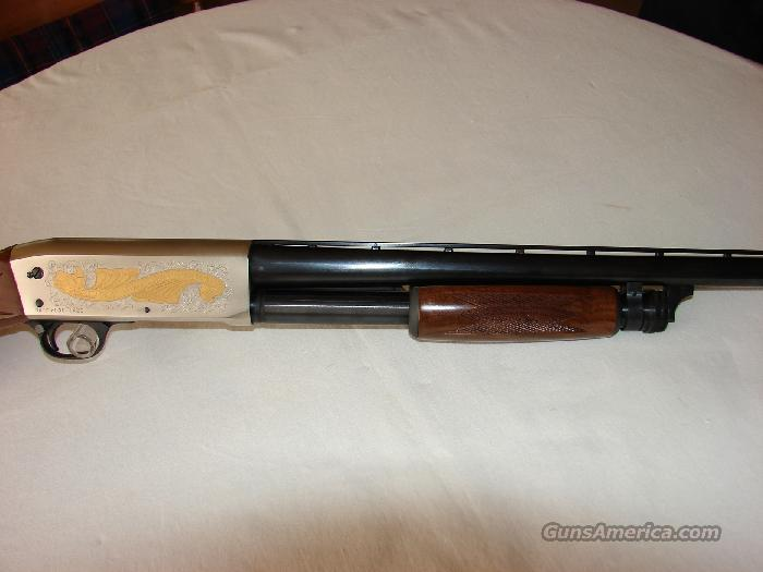 Ithaca NWTF Model 37  Guns > Shotguns > Ithaca Shotguns > Pump