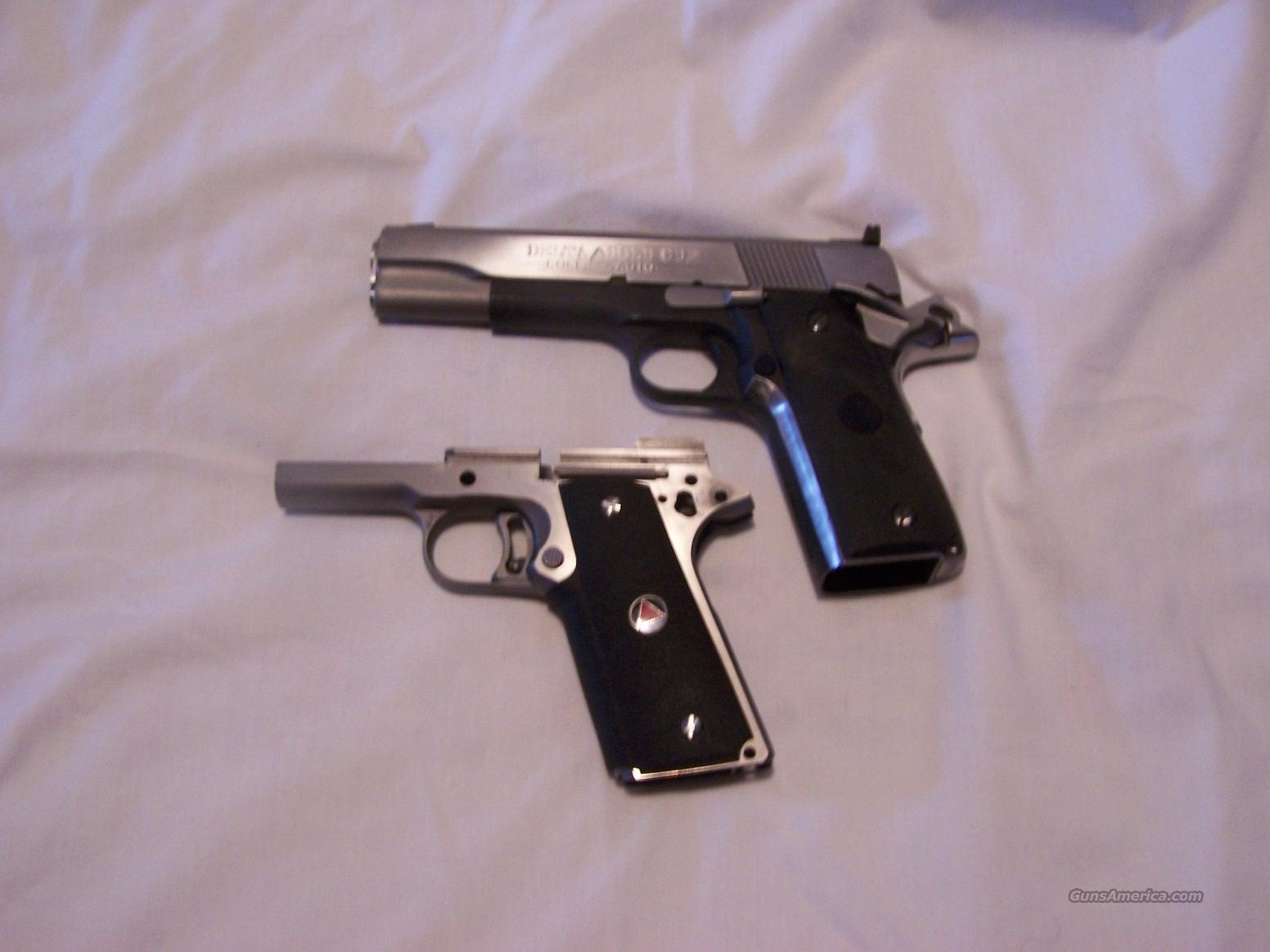 Colt Gold Cup, Stainless Steel 10 mm.  Guns > Pistols > Colt Automatic Pistols (1911 & Var)